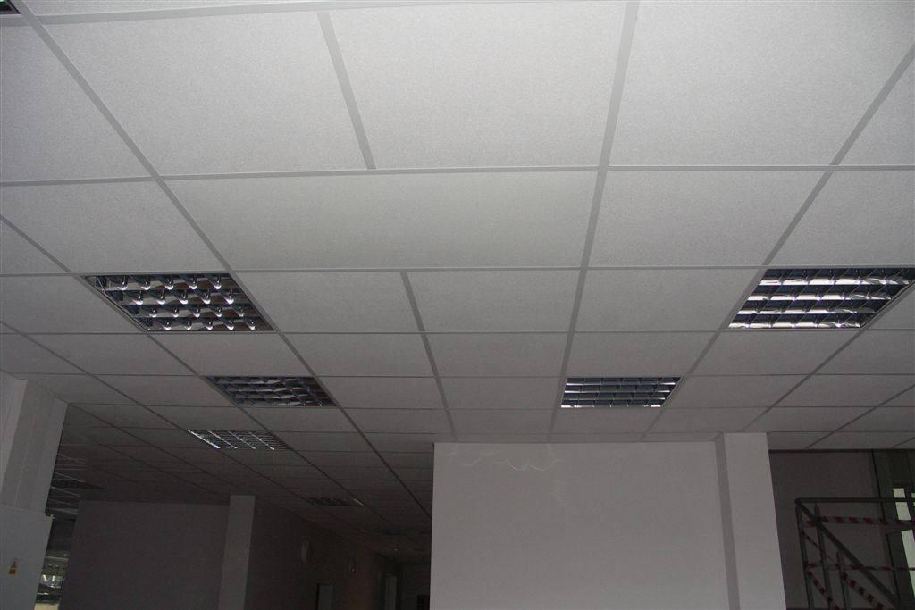 10476538 1480146882269837 4835611164134475883 o - Standard radiators