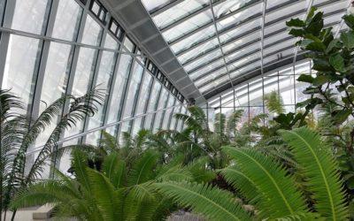 AgroEcosun Pflanzen und tiere