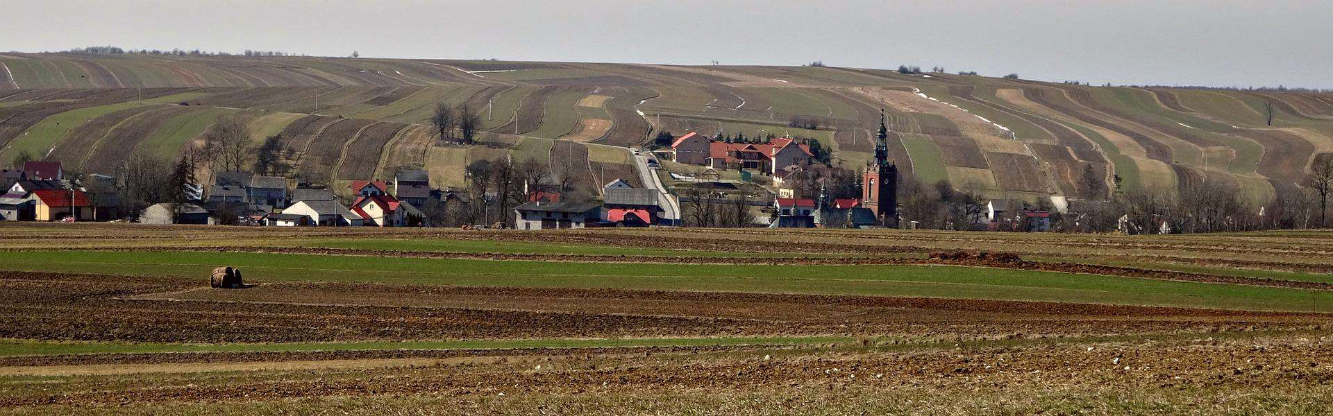 fields 1330974 1920 - AgroEcosun